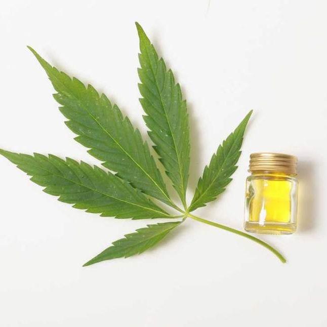 a cannabis leaf and oil