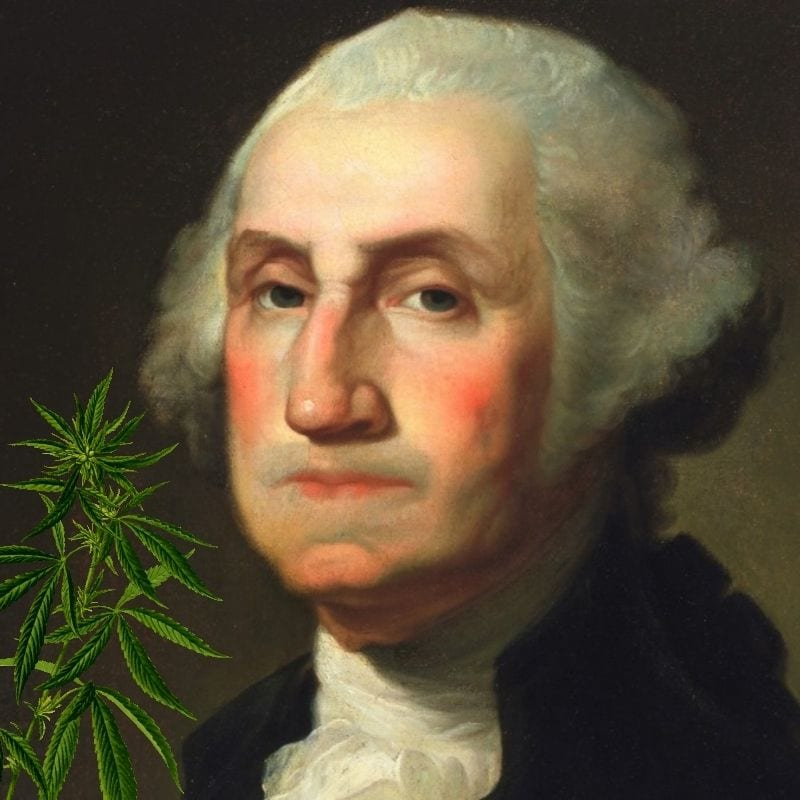 George washington weed